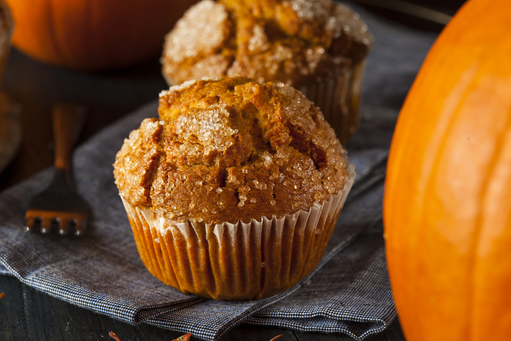 pumpkin recipes with whey
