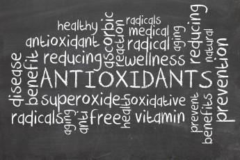 Q&A: Do antioxidants help or hinder us?