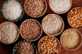 All About Grains and Health