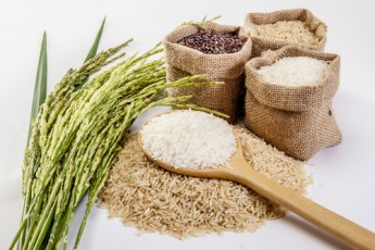 Changing How Rice is Cooked May Reduce Its Calories