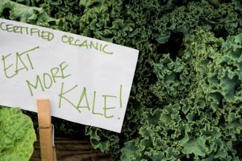 Recipe: Kale & Banana Smoothie