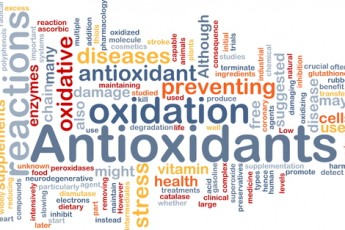 Do Antioxidants Help or Hinder?